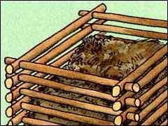 Садовая земля и компост. Как правильно выбивать землю из горшка при пересадке растения.